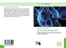 Portada del libro de Lysine Dehydrogenase