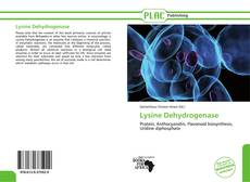 Capa do livro de Lysine Dehydrogenase