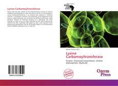 Bookcover of Lysine Carbamoyltransferase