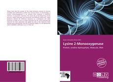 Bookcover of Lysine 2-Monooxygenase