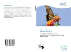 Copertina di Blandfordia