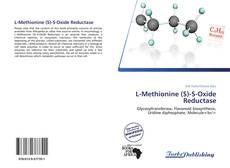 Bookcover of L-Methionine (S)-S-Oxide Reductase
