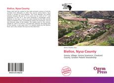 Bookcover of Bielice, Nysa County