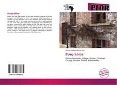 Borítókép a  Burgrabice - hoz