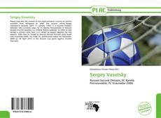Sergey Vasetsky kitap kapağı