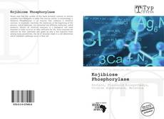 Bookcover of Kojibiose Phosphorylase