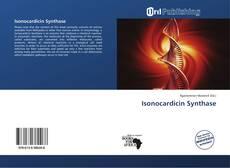 Buchcover von Isonocardicin Synthase
