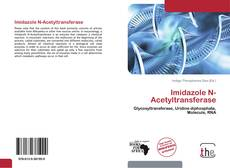 Bookcover of Imidazole N-Acetyltransferase