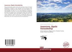 Buchcover von Jaworzno, Opole Voivodeship