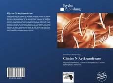 Обложка Glycine N-Acyltransferase
