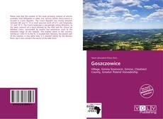 Buchcover von Goszczowice