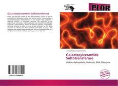 Bookcover of Galactosylceramide Sulfotransferase
