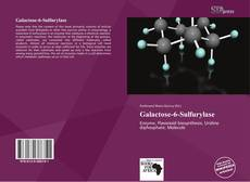 Bookcover of Galactose-6-Sulfurylase