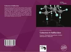 Galactose-6-Sulfurylase的封面