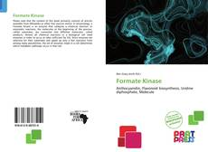 Bookcover of Formate Kinase