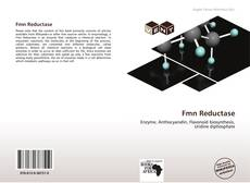 Bookcover of Fmn Reductase