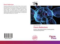 Bookcover of Flavin Reductase