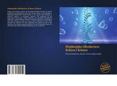 Copertina di Dephospho-(Reductase Kinase) Kinase