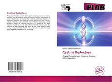 Bookcover of Cystine Reductase