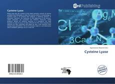 Bookcover of Cysteine Lyase