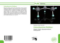 Bookcover of Columbamine Oxidase