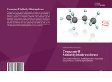 Borítókép a  Coenzyme-B Sulfoethylthiotransferase - hoz