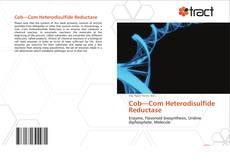 Cob—Com Heterodisulfide Reductase的封面