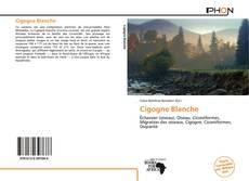 Cigogne Blanche kitap kapağı