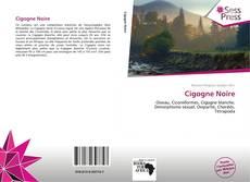 Bookcover of Cigogne Noire