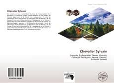 Buchcover von Chevalier Sylvain