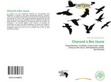 Buchcover von Chocard à Bec Jaune
