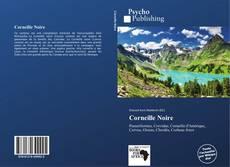 Bookcover of Corneille Noire