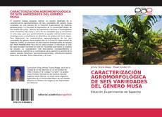 Buchcover von CARACTERIZACIÓN AGROMORFOLÓGICA DE SEIS VARIEDADES DEL GENERO MUSA