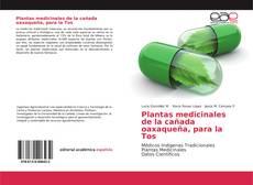 Bookcover of Plantas medicinales de la cañada oaxaqueña, para la Tos