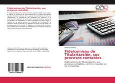 Bookcover of Fideicomisos de Titularización, sus procesos contables