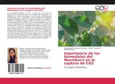 Portada del libro de Importancia de los Humedales del Ñeembucú en la captura de CO2