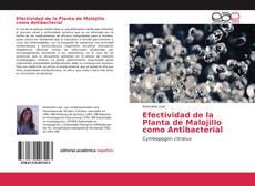 Efectividad de la Planta de Malojillo como Antibacterial kitap kapağı