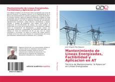 Copertina di Mantenimiento de Lineas Energizadas, Factibilidad y Aplicacion en AT