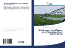 Bookcover of Isolation and Identification of soil borne fungi from District Kasoor