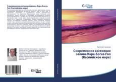 Bookcover of Современное состояние залива Кара-Богаз-Гол (Каспийское море)