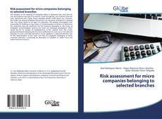 Risk assessment for micro companies belonging to selected branches kitap kapağı