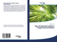 Bookcover of Egy vak gyermek esélyei a magyar köznevelésben