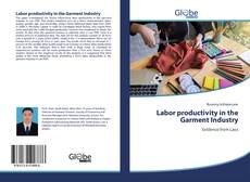 Обложка Labor productivity in the Garment Industry