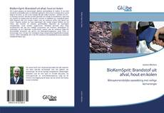 Buchcover von BioKernSprit: Brandstof uit afval, hout en kolen