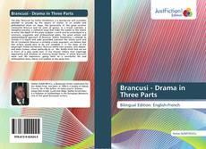 Portada del libro de Brancusi - Drama in Three Parts