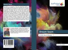 Capa do livro de Dream Seam