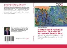 Copertina di Contabilidad Pública y Tribunal de Cuentas. El caso de Puerto Rico.