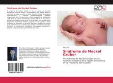 Bookcover of Síndrome de Meckel Grúber