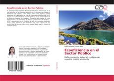 Buchcover von Ecoeficiencia en el Sector Público
