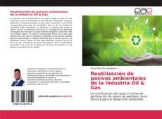 Reutilización de pasivos ambientales de la Industria Oíl & Gas的封面